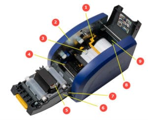 Impresora BradyPrinter i5300